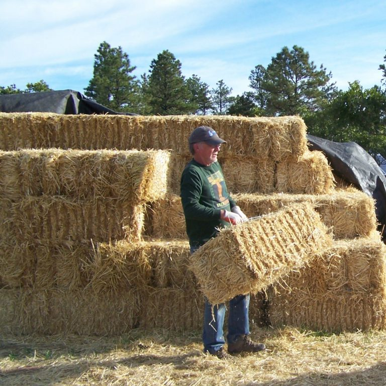 Read more about the article Straw Bale